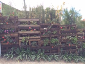 Pallet reused as planter fence